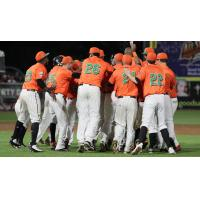 Liberty Division celebrates walk-off win in Atlantic League All-Star Game