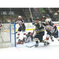 Wheeling Nailers celebrate a goal against the Greenville Swamp Rabbits