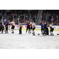 Utah Grizzlies square off with the Kansas City Mavericks
