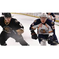 Greenville Swamp Rabbits forward Kamerin Nault (right) vs. the Newfoundland Growlers