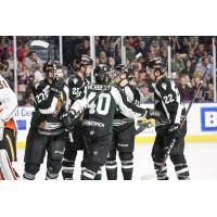 Utah Grizzlies celebrate a goal against the Kansas City Mavericks