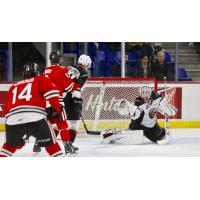Vancouver Giants goaltender David Tendeck makes a save against the Portland Winterhawks