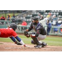 Eric Young, Jr. of the Tacoma Rainiers dives home against the Albuquerque Isotopes